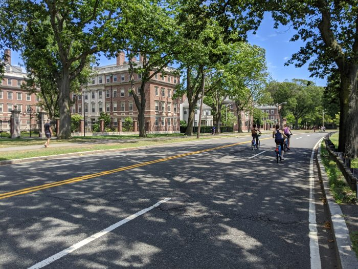 A photo of a 4 lane road that is shaded by large trees and is empty of cars. It is a sunny day, there are 4 people biking on the road, and 1 person walking on the sidewalk.